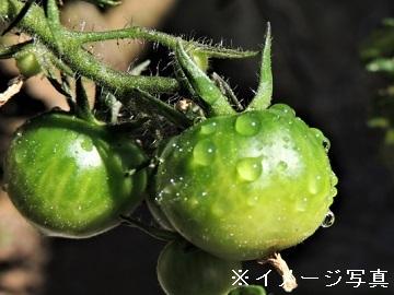 全国×農業資材/法人【32408】-top