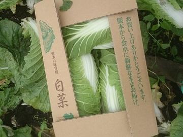 廣瀬農園-2