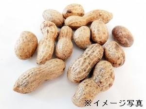 旭市×農園/個人【32444】-top