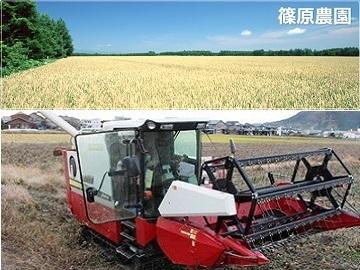 篠原農園-top