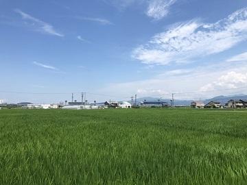トピカ農産-6