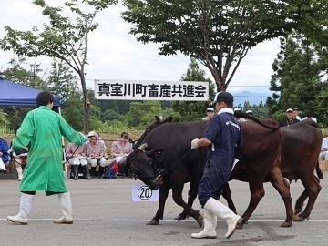 株式会社ヤマタ畜産-3