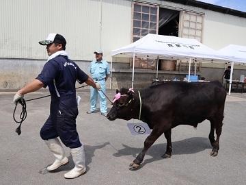 株式会社ヤマタ畜産-top