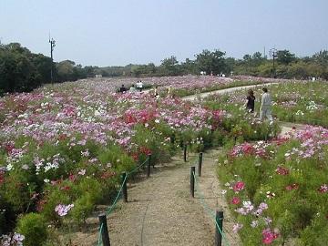 久留米市×造園・花卉/法人【32477】-top
