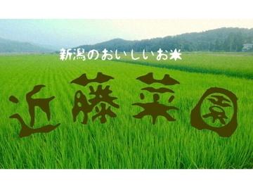 近藤菜園(新潟市)-top