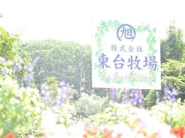 株式会社東台牧場-top