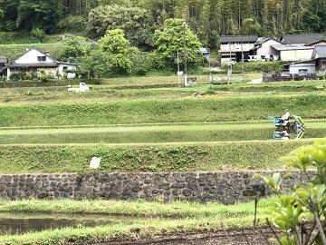矢仁田農園-4