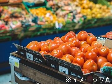 東大阪市×営業/法人【32537】-top