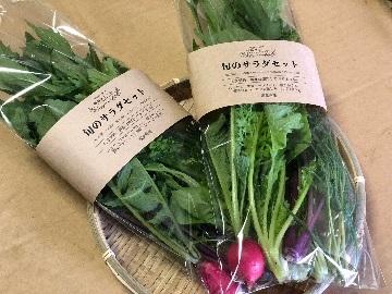 有限会社旬彩ファーム-8