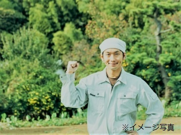 吉岡町×野菜/個人【32543】-top
