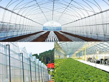全国×農業資材/法人【6361】
