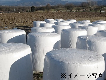 日田市×飼料製造/法人【32581】-top