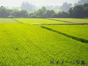 松阪市×稲作・畑作/個人【32589】-top