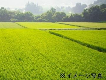 郡山市×稲作/法人【32599】-1
