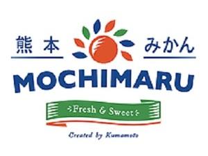株式会社持丸園-top