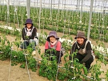 小林農園(本庄市)-1