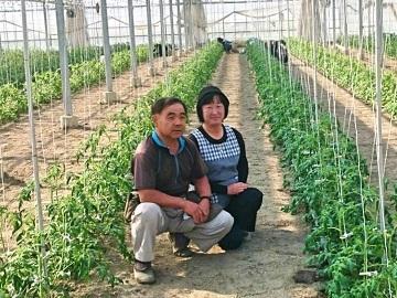 小林農園(本庄市)-2