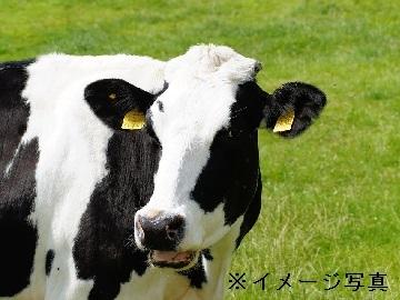 郡上市×観光牧場・酪農/法人【32697】-top
