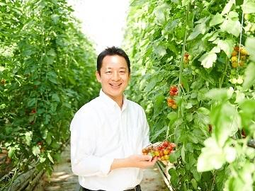 株式会社井出トマト農園-6