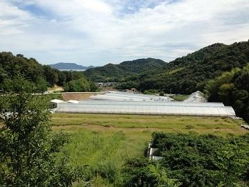 株式会社せとうち農園-1