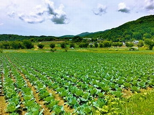 農業を始めるなら最低限おさえておきたい3つの基本