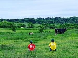 片野牧場-top