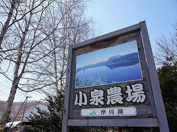 株式会社小泉農場-top