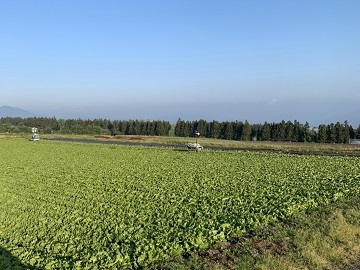 中村農園-1