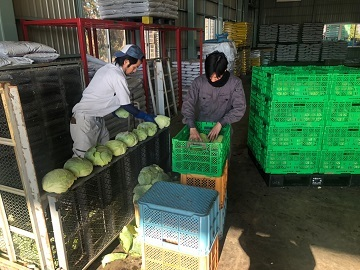 株式会社内田農園-3