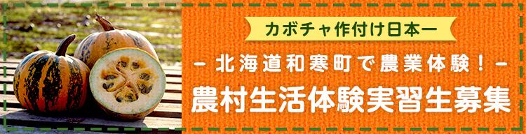 農村生活体験実習生募集