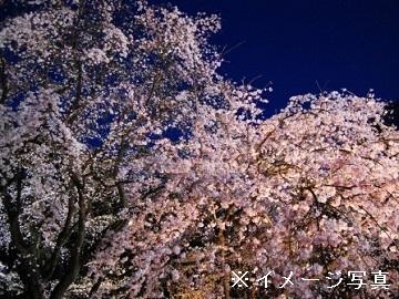 鈴鹿市×植木/法人【33115】-2