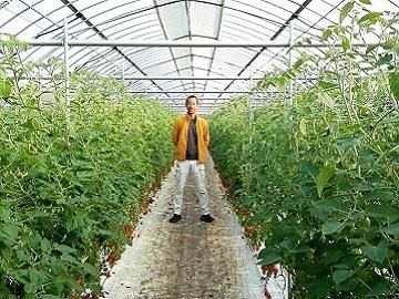 株式会社川合農園-top
