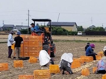 村上農園-1