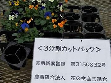 農事組合法人花の生産舎組合-3