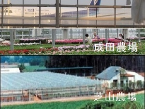 農事組合法人 花の生産舎組合-top