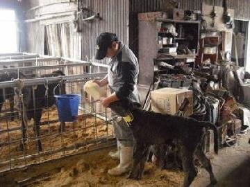 福岡県酪農ヘルパー利用組合-3