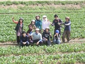 佐久市×野菜/法人【33277】-top