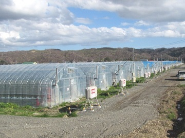 北海道新ひだか町 新規就農研修生募集-1