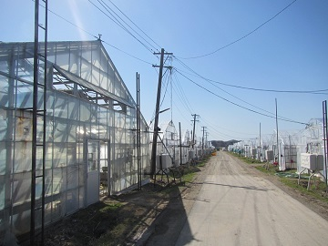 北海道新ひだか町 新規就農研修生募集-4