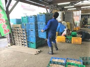 株式会社山屋青果市場-7