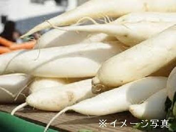 上北郡×野菜/法人【33347】-top