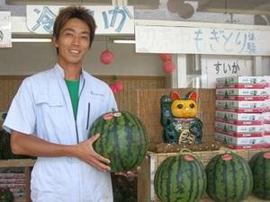尾花沢市×果樹/法人【33372】-top