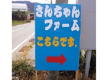 さんちゃんファーム-8
