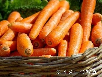 稲敷市×稲作/法人【33381】-1