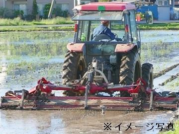 稲敷市×稲作/法人【33381】-2