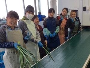 葛城市×野菜/法人【33421】-top