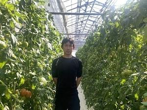 ぬかや農園-top