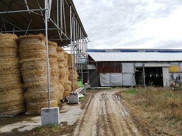 鎌田畜産牧場-7