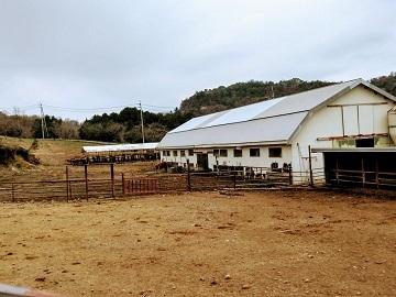 農事組合法人 雪ヶ峰牧場 牛乳生産組合-4