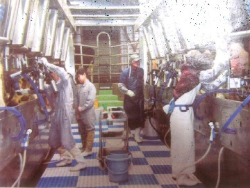 農事組合法人 雪ヶ峰牧場 牛乳生産組合-8